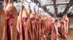 Połówki wieprzowe chłodzone Pochodzenie: Holandia